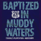 baptized muddy waters shirt